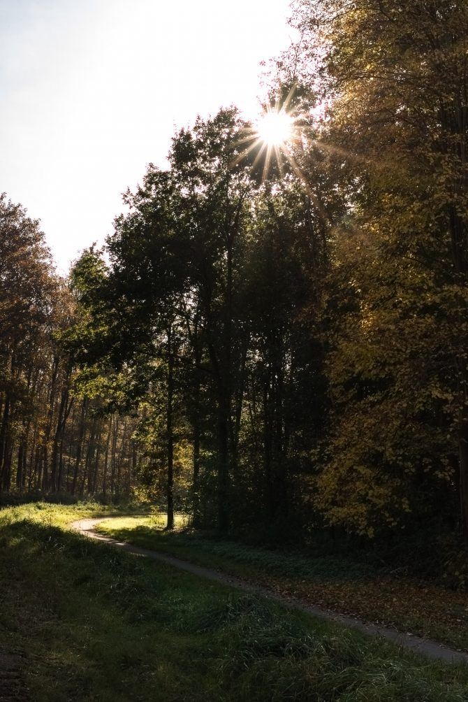 herfstwandeling-laurie-karine-outdoor-by-manja-buiten001