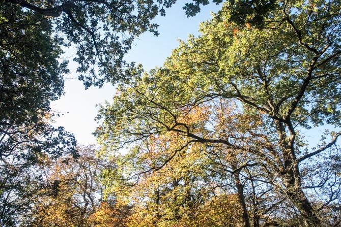 rondje-duin-en-kruidberg-by-manja-outdoor-buiten-5