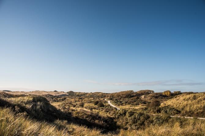 rondje-duin-en-kruidberg-by-manja-outdoor-buiten-7
