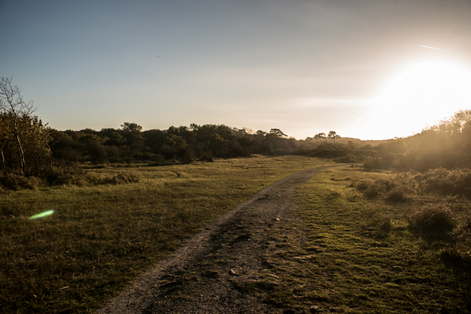 rondje-duin-en-kruidberg-by-manja-outdoor-buiten-9
