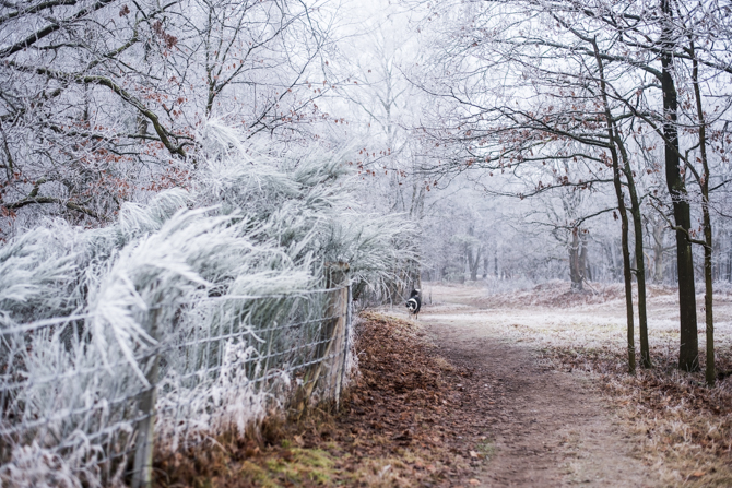 winter-wonderland-by-manja-outdoor-buiten-1