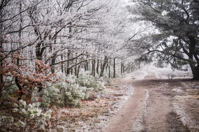 winter-wonderland-by-manja-outdoor-buiten-12