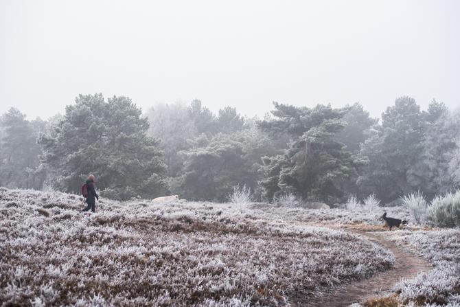 winter-wonderland-by-manja-outdoor-buiten-14