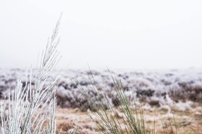 winter-wonderland-by-manja-outdoor-buiten-17