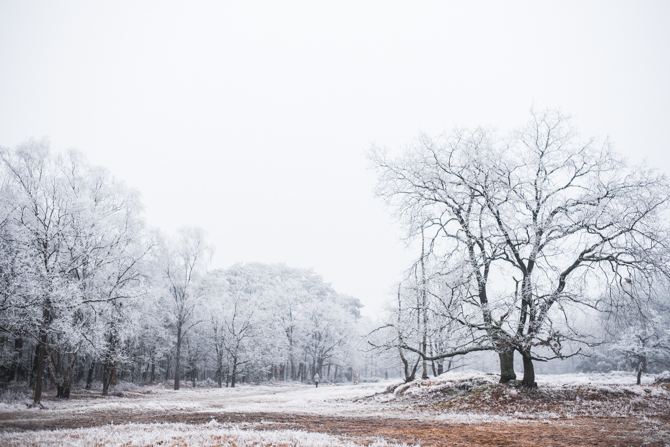winter-wonderland-by-manja-outdoor-buiten-3