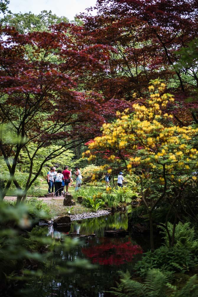 Japanse tuin Clingendael Den Haag By Manja outdoor buiten
