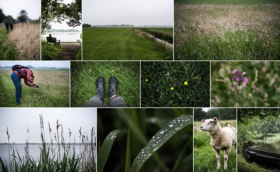 Ankeveense Plassen By Manja outdoor collage