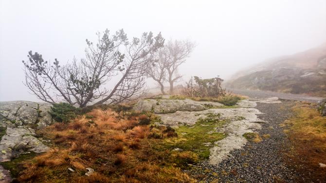 By Manja outdoor buiten Bergen Noorwegen