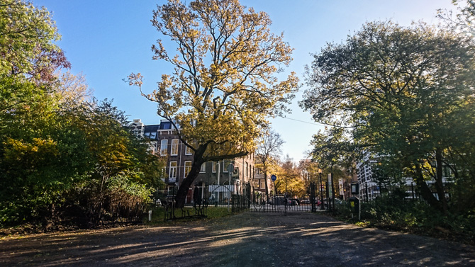 By Manja outdoor buiten Oosterpark Amsterdam-1