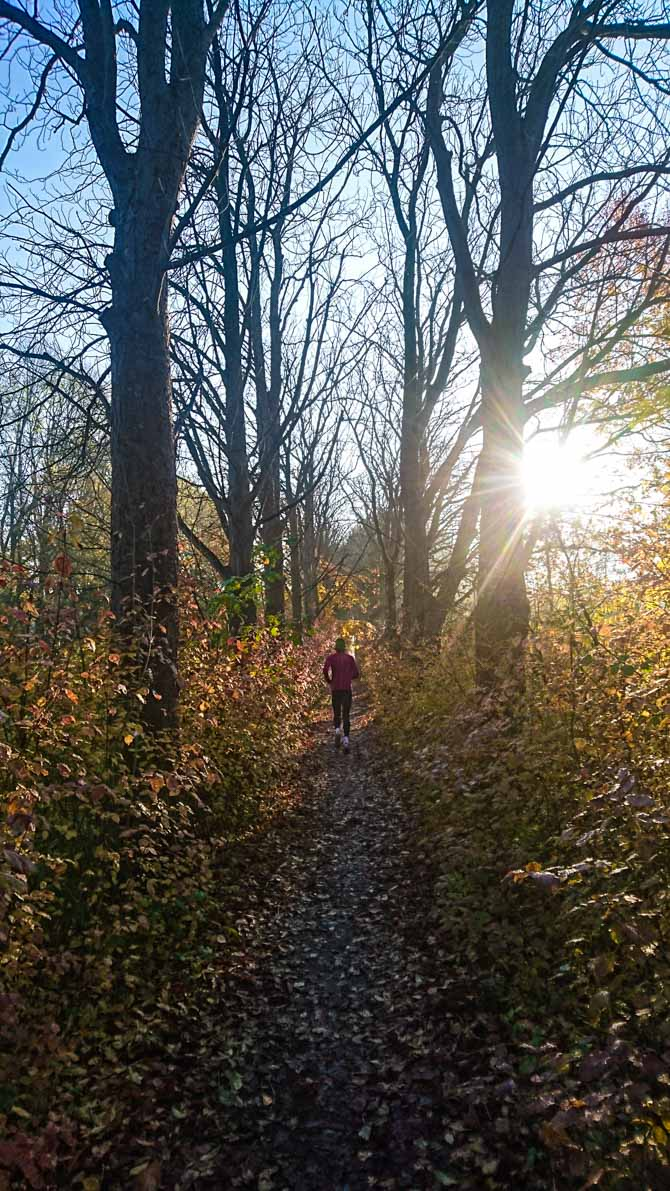 Herfst hardlopen hardlooprondje Utrecht By Manja outdoor buiten