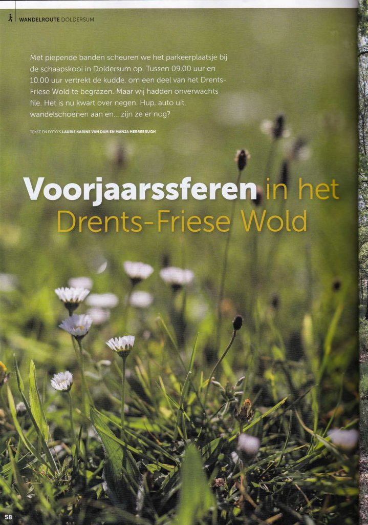 Sfeerverhaal wandelroute Drents-Friese Wold